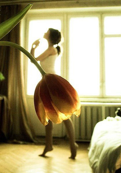 Tulip ballet dancer