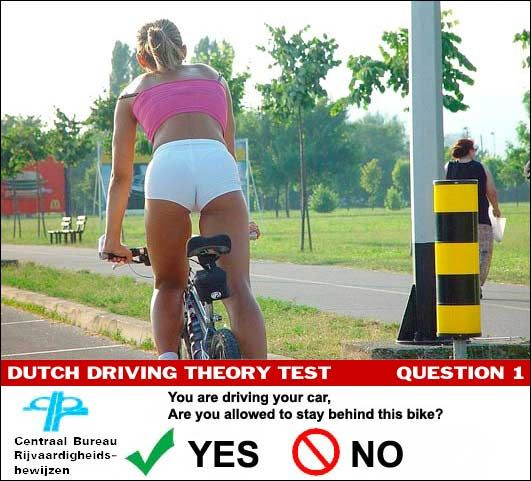 Dutch Driving Test Ad