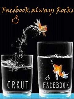 Facebook Rocks