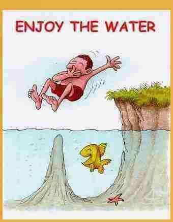Enjoy the water
