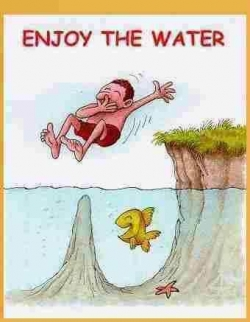 Funny photos - Enjoy the water