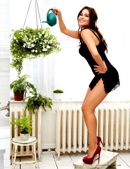 Sexy Sofia Vergara 2