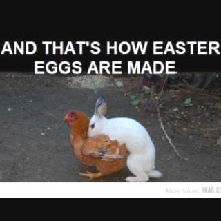 That's how Easter eggs are made