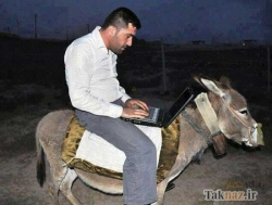 Funny photos - Man on the donkey
