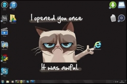 Animal photos - grumpy cat vs. internet explorer. more fun at ▬▬► www.make4fun.com