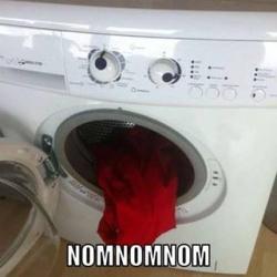 Funny photos - Nomnomnom