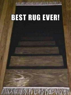 Funny photos - best rug ever