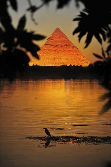 pyramids ,, egypt