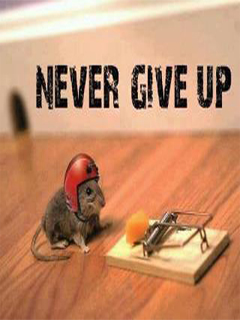 Never Give Up Funny