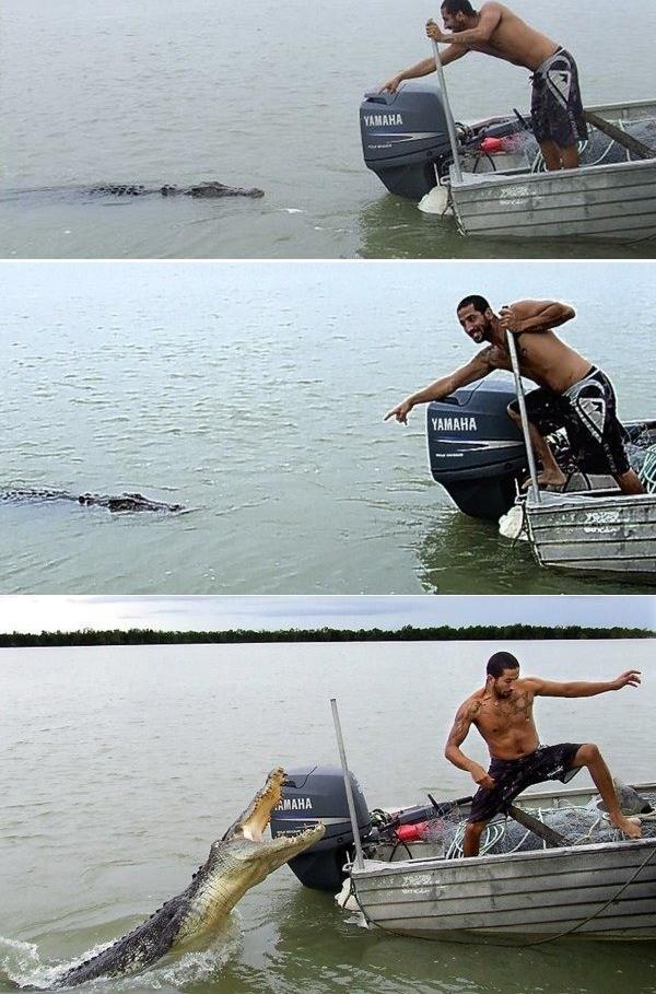 Man and crocodile