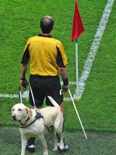 Sportsmen photo - Referee Euro 2012