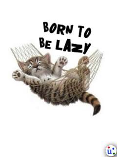 Born 2 B Lazy