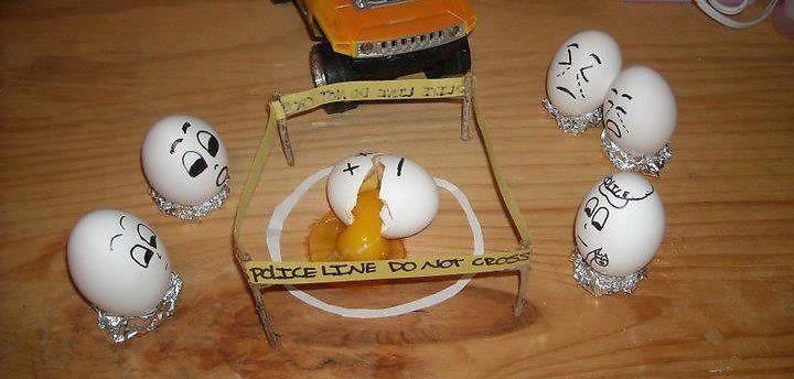Egg accident
