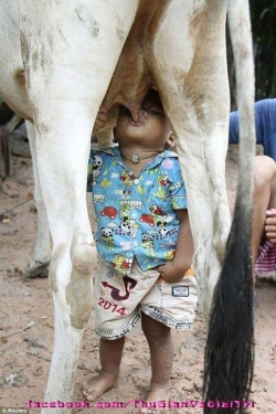 Funny photos - Breast milk