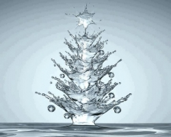 Christmas photos - Water christmas tree