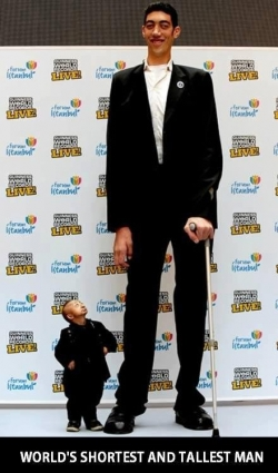 Funny photos - Tallest and shortest man