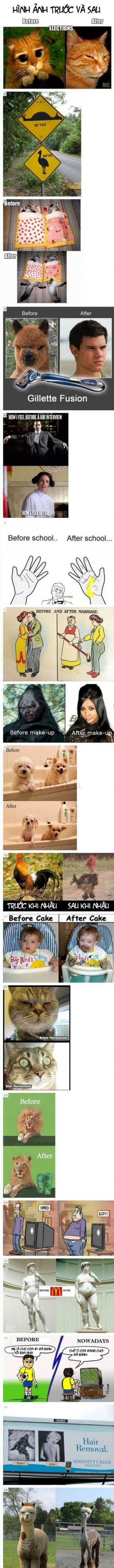 Funny photos - Before - after