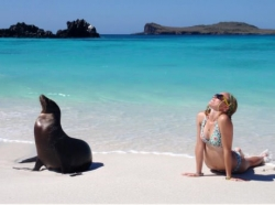 Funny photos - Chillin with a sea lion.