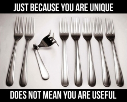 Funny photos - Unique does not mean you useful.