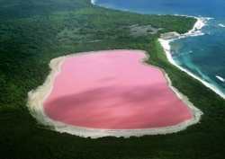 Miscellaneous pictures - Pink lake