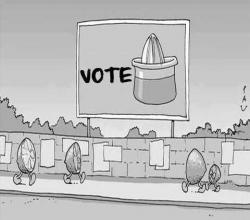 Funny photos - Orange vote