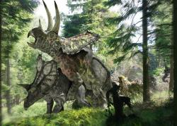 Animal photos - Pentaceratops dinosaurs mating