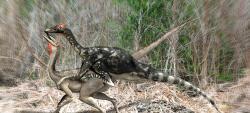 Animal photos - Pelecanimimus dinosaurs mating