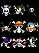 One Piece Skull Logo