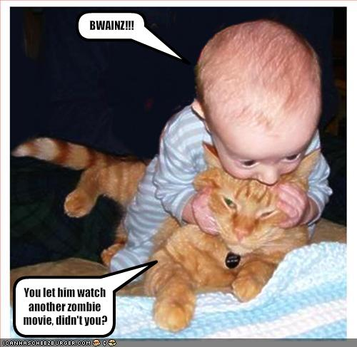 Cat and babby