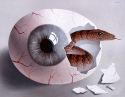 3D and Digital art Wallpaper - See through the eyes of a snake