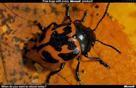 Free bug