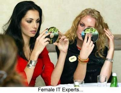 IT experts