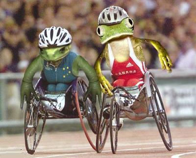Frog's wheel