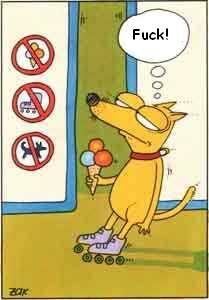 Funny photos - No dog, no ice cream