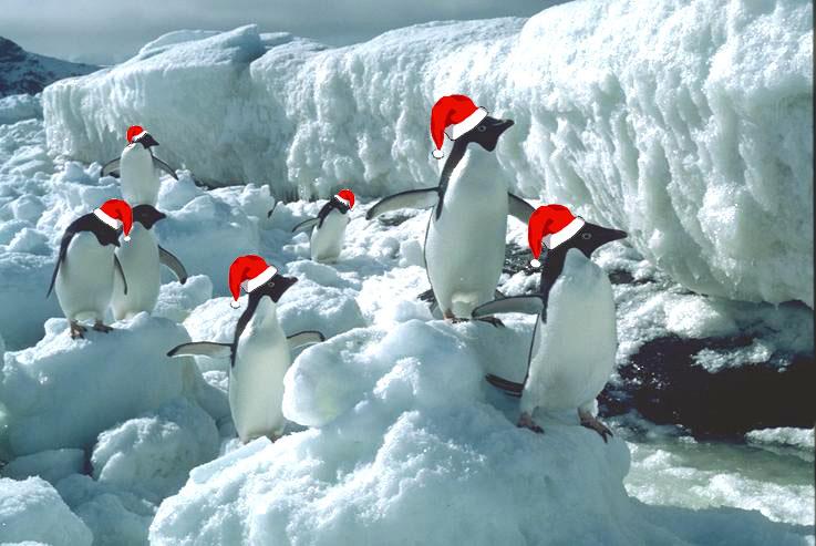 Happy White Christmas