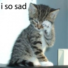 Animal photos - I so sad...