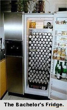 Funny photos - The bachelor's fridge