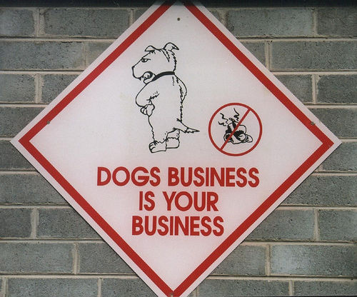 Dogs business