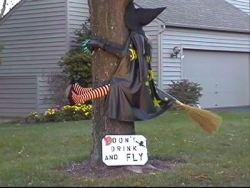 Funny photos - Witch