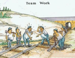 Funny photos - Team work