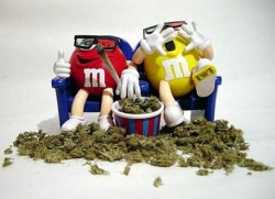 Funny photos - Weed out