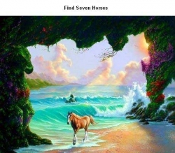 Funny photos - Seven horses