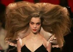 Funny photos - Big hair