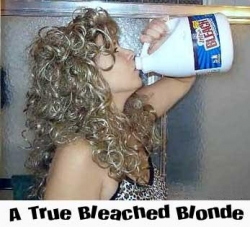 Funny photos - Bleached blonde
