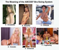 Playboy photos - Bra sizing system