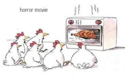 Animal photos - It's a horror movie