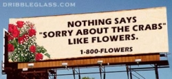 Funny photos - Flower billboard