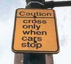 Funny photos - Helpful crossing