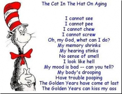 Funny photos - The cat in the hat