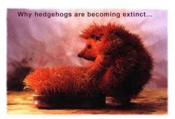 Animal photos - Extinct